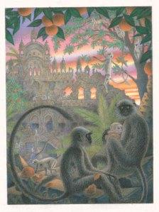 Childrens-Illustration-Junglebook