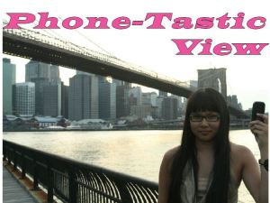 phonetasticview